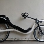 RaptoBike Lowracer Review